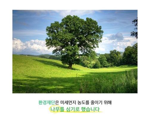 환경재단은 미세먼지 농도를 줄이기 위해 나무를 심기로 했습니다