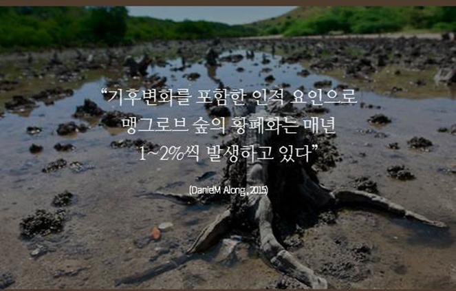 """""""기후변화를 포함한 인적 요인으로 맹그로브 숲의 황폐화는 매년 1~2%씩 발생하고 있다"""" (DanielM Along,2015)"""