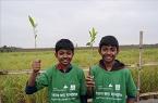 지구온난화 막는 맹그로브 나무